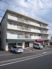 nishiyama-v2.JPG