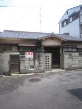 shibukawa-m2.JPG