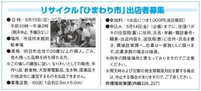 himawariichi-22-6.JPG