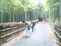 takenomichi-seisou.jpg